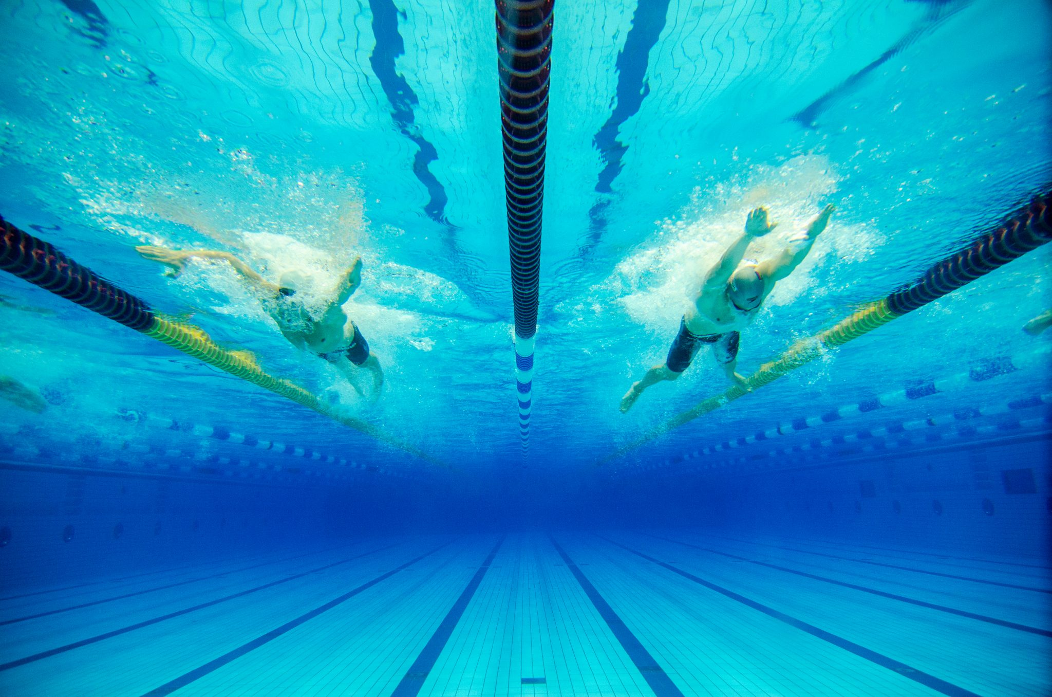 dynamic swimming competition in a blue pool