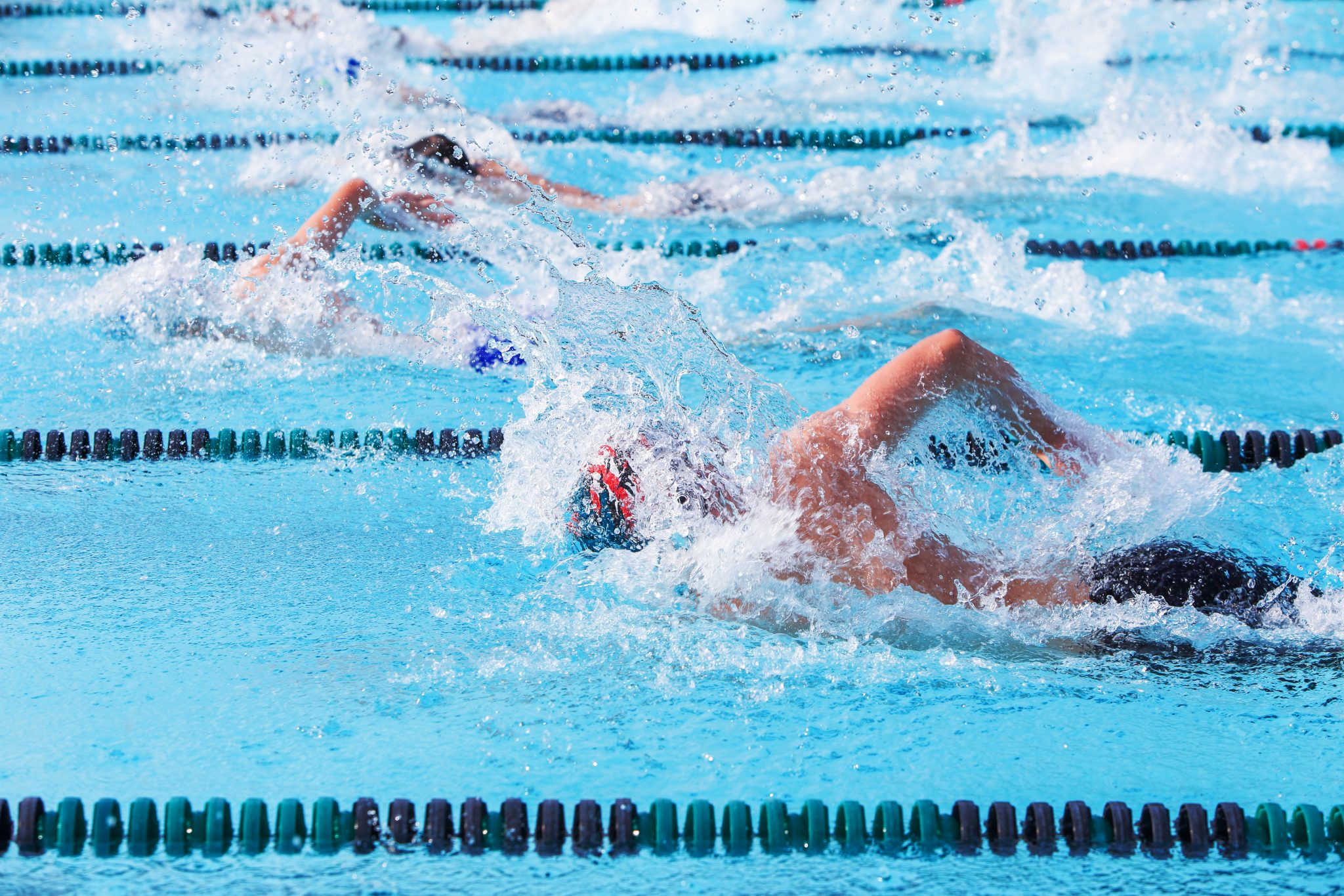 Freestyle swimmers racing