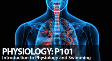 Physiology: P101